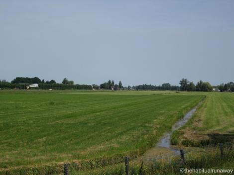 Dutch Irrigation