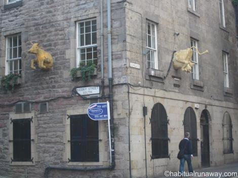 Golden Cow at Cowgate