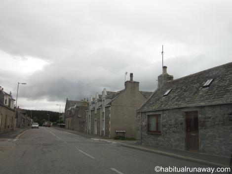 Grey Tomintoul