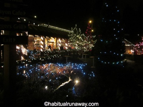 Christmas at Capilano