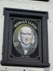 Lloyd Portrait