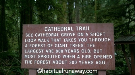 Cathedral Trail