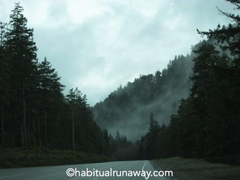 Fog Setting up the Malahat Hwy