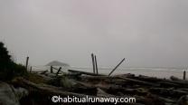 Grey Weather Long Beach