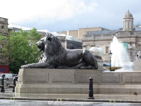 Lion in Trafalgar Square