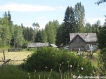 Cottonwood Settlement