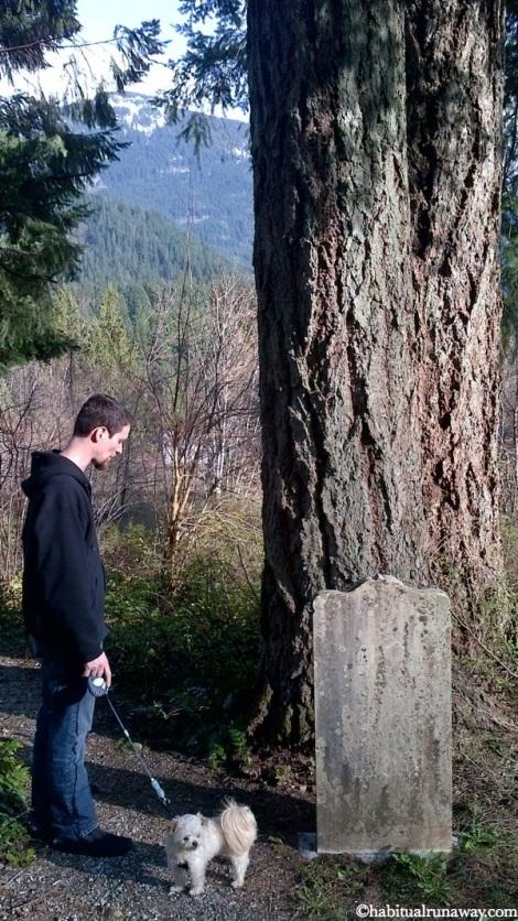 Facing a Tree