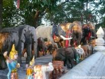 Good Luck Elephants