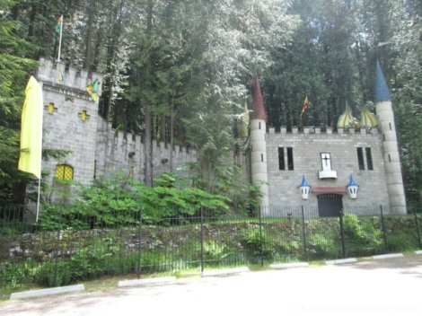 Castle At The Enchanted Forest