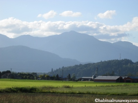 Farmland In The Fraser valley