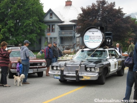 Revelstoke Blues Brothers