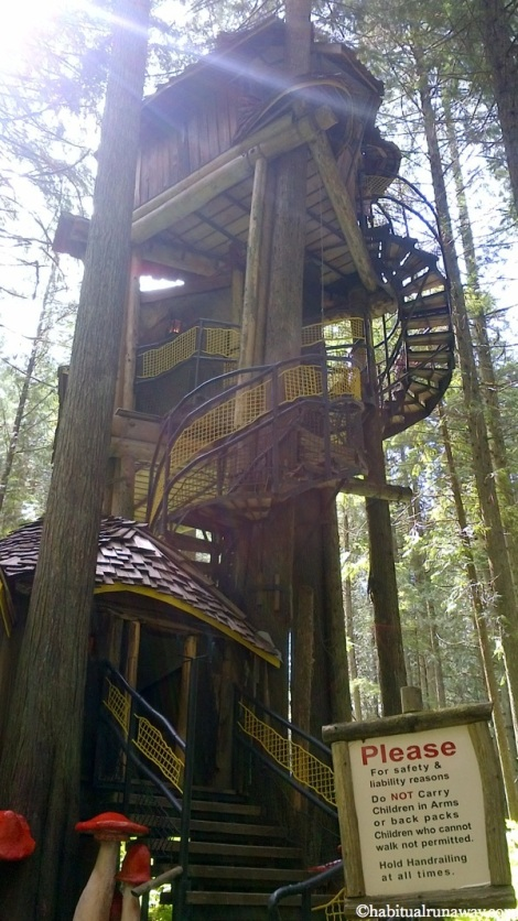 Tall Treehouse
