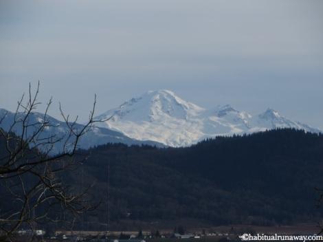 Mountain Views Heritage Park