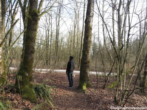 Walking Trails Heritage Park