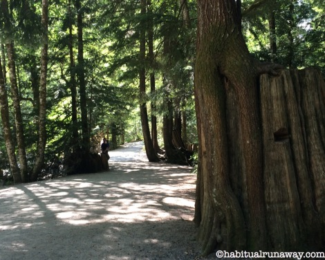 Path at Shannon Falls BC